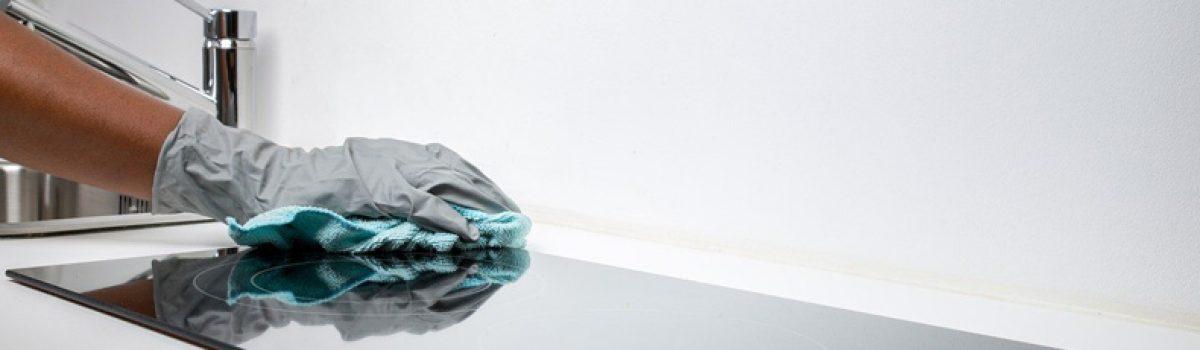 Sociétés de nettoyage et de services à la personne